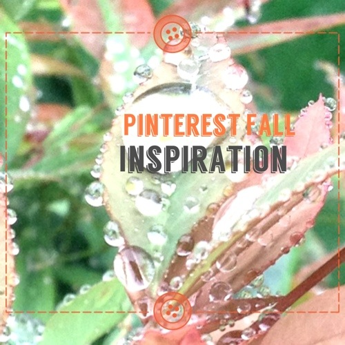 Fall crafts you must see