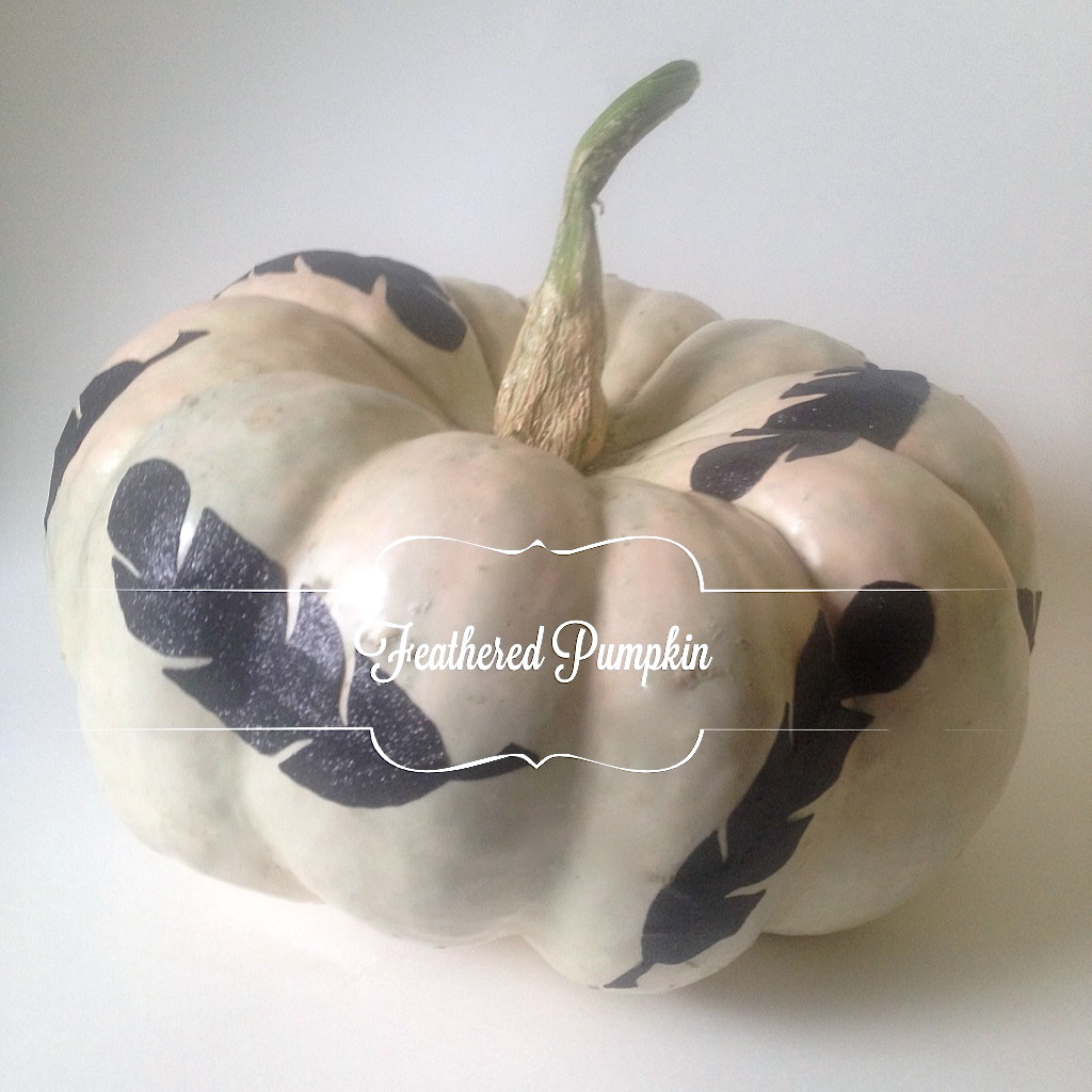 Pumpkins with Feathers DIY